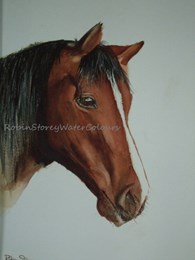 Rosie, original watercolour painting by Robin Storey
