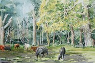 Burton Bushes Cows, original watercolour painting by Robin Storey