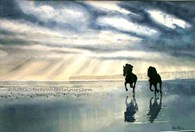 Beach Horses, original watercolour painting by Robin Storey