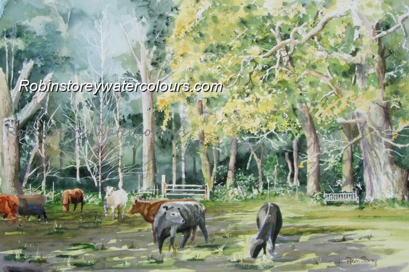 Burton Bushes Cows ,original watercolour by Robin Storey