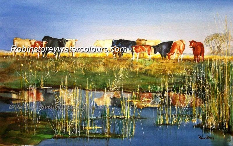 Watering Cows ,original watercolour by Robin Storey