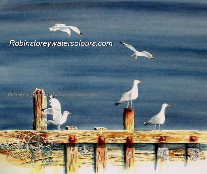 Gulls ,original watercolour by Robin Storey